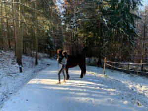 Outdoor Riders Cup für Islandpferde 2019